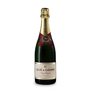 Comprar vino online Juve y Camps Cinta Púrpura Brut - DO Cava